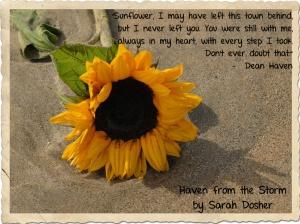 Sunflower Quote - left behind