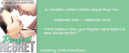 Perfect Regret Blog Tour Banner