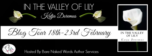valley of lily blog tour